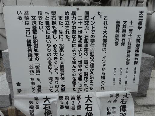 t15_R.JPG