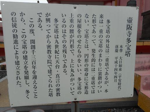 t18_R.JPG