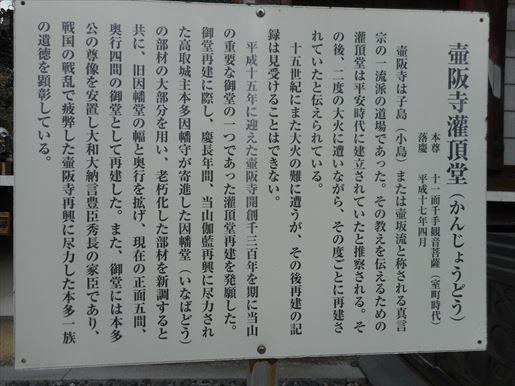 t21_R.JPG